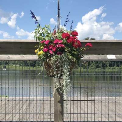 Collinsville, CT - bridge decorated with flowers