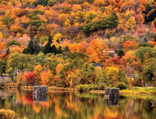 photo: Autumn along the Farmington River